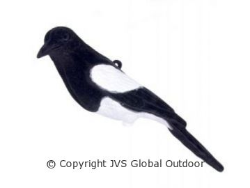 Und der lockvogel robin Sarahebi